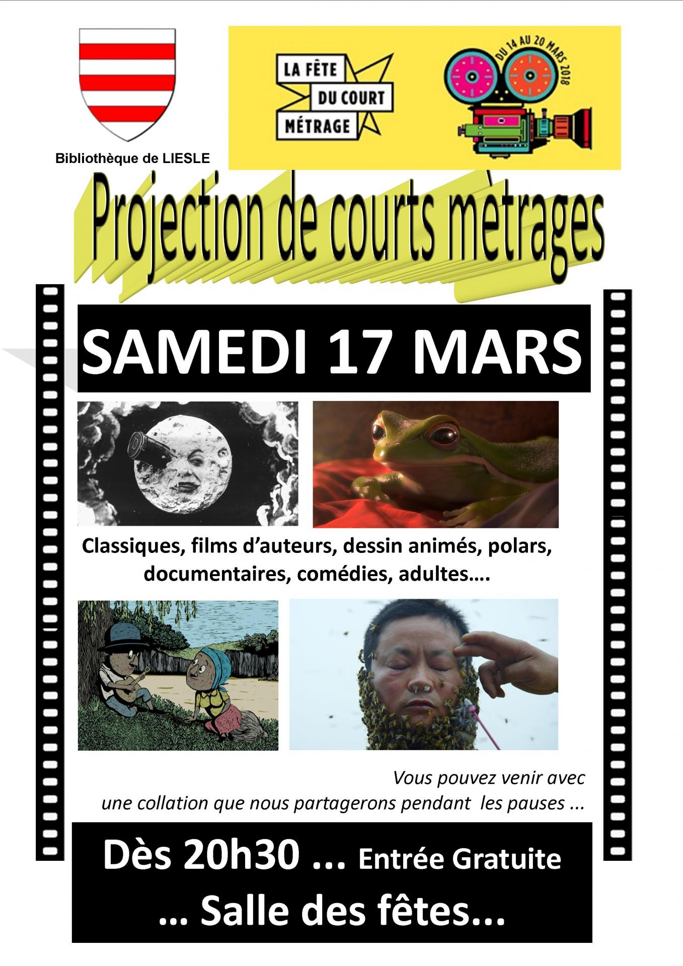 A4 affiche soiree court metrages