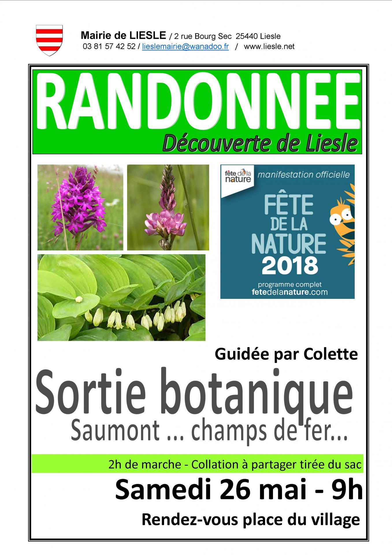 Affiche randonnee botanique