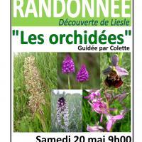 Affiche randonnee orchidees 17
