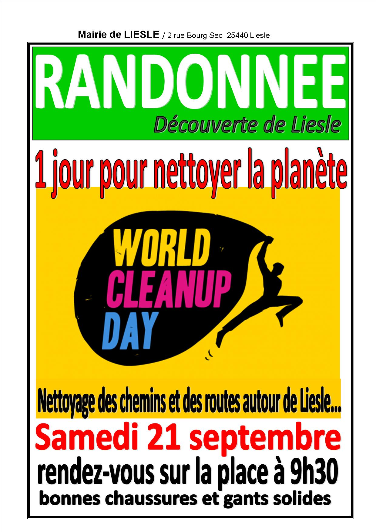 Affiche world clean up liesle19