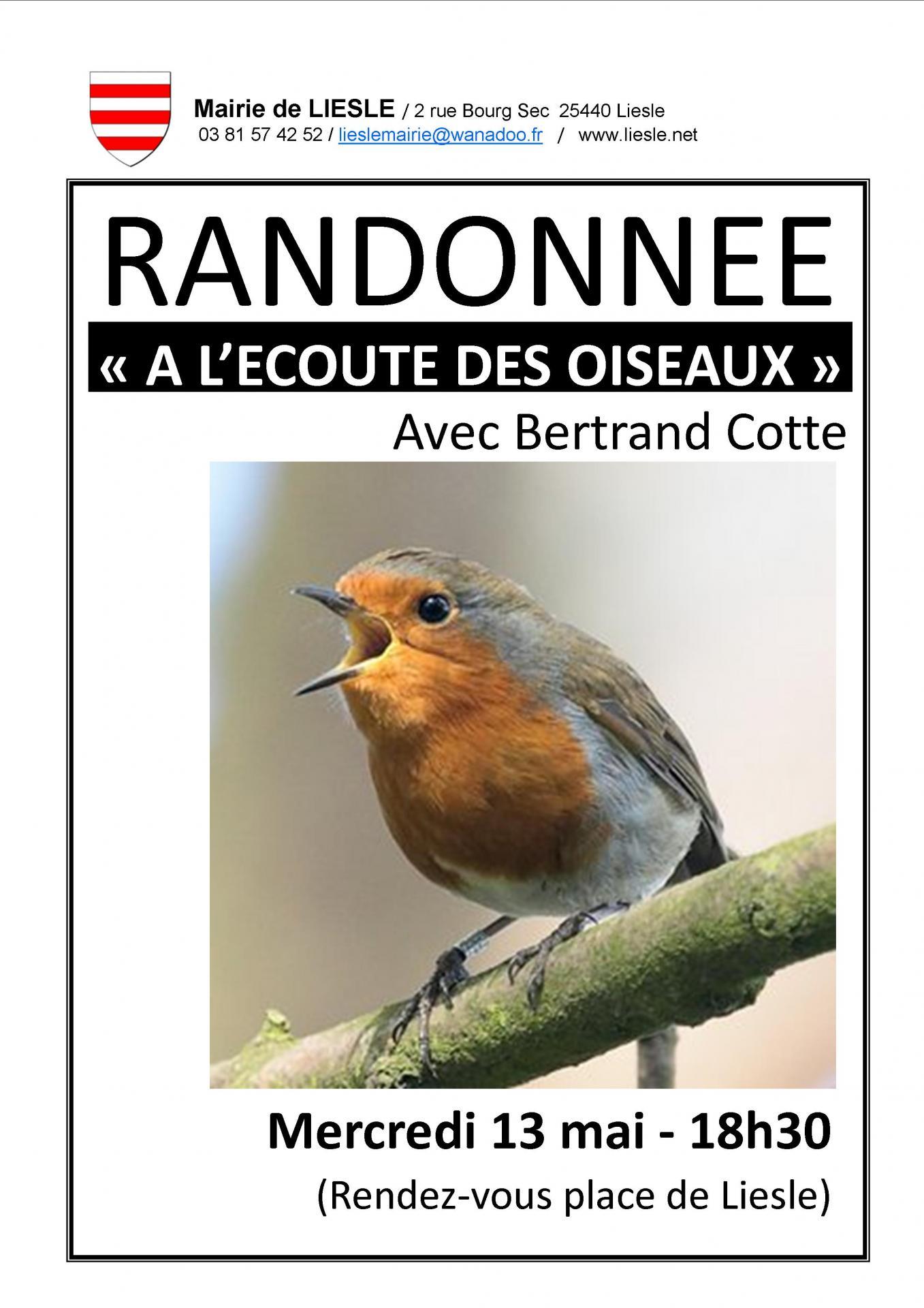 Randonnee oiseaux 2